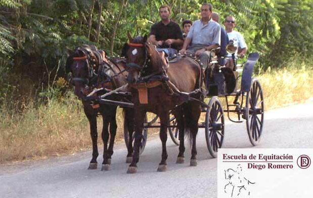 Ruta de Lorca en coche de caballos