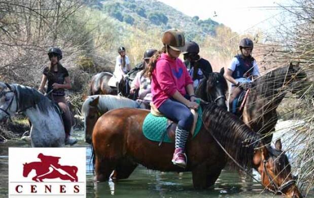 ¡Aprende a montar a caballo!