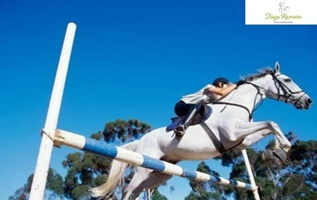 Clases de equitación a cualquier nivel