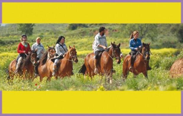 Paseos a caballo en la Vega de Granada