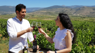 Visita guiada + Cata + Cena en La Alpujarra