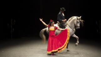 Entradas Ópera Carmen de Salvador Távora, 26 julio en Almería