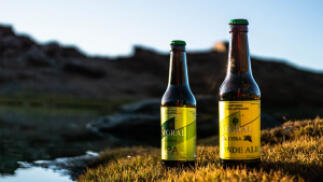 Pack de 12 Cervezas Artesanales elaboradas en la provincia de Granada