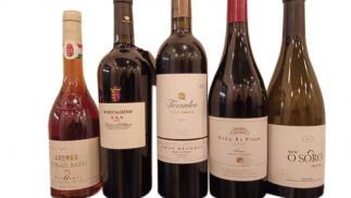 Granada Gourmet 2019 Cata mejores añadas de las grandes bodegas de España