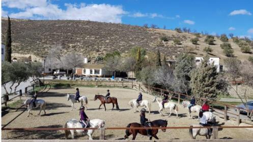 Campamentos de verano para 1 persona 7 días Finca Malpasillo