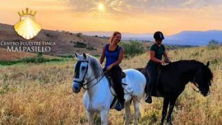 Paseo a caballo para 2, 3 o 4 personas en plena naturaleza (1h) desde 15,90€