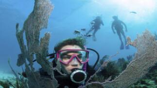 Curso ACUC Scuba Diver de iniciación al buceo (2 días)