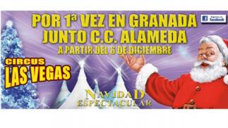 Entrada niño + adulto Circo Las Vegas