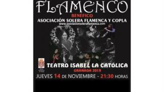 Espectáculo flamenco, 14 noviembre