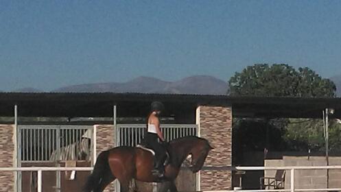 Bono 4 clases de equitación niños o adultos (inicial o avanzado)